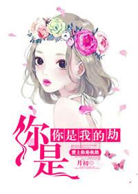 爱上你是我的劫苏柠檬韩子墨小说全文目录在线阅读